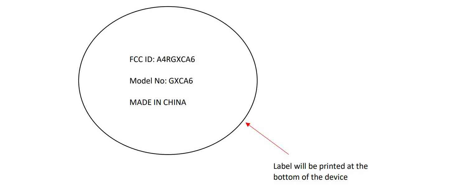 Google GXCA6 FCC label