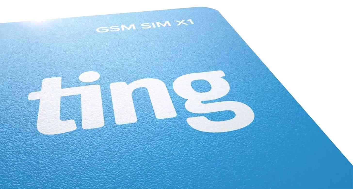 Ting SIM card large