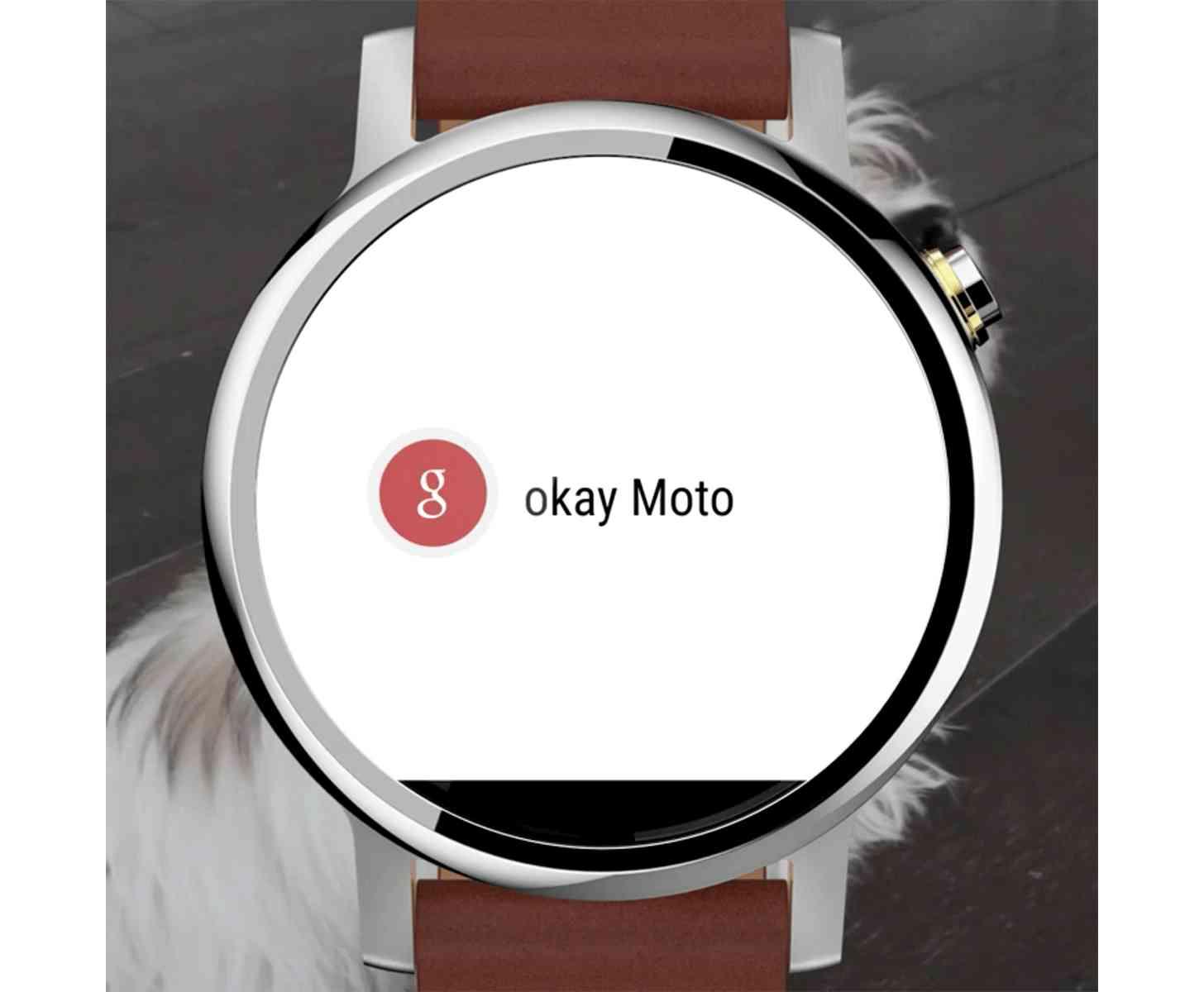 New Moto 360 leak large?