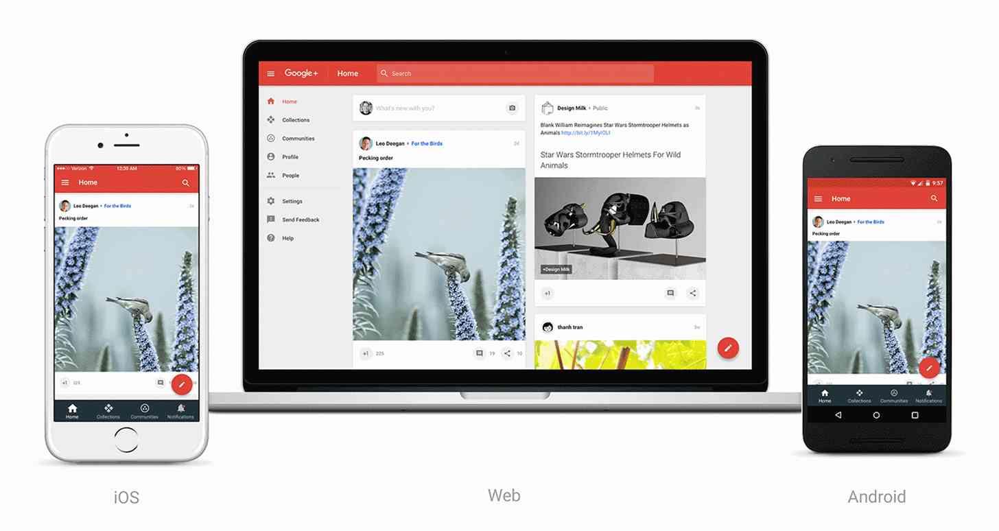 New Google+ Plus home stream
