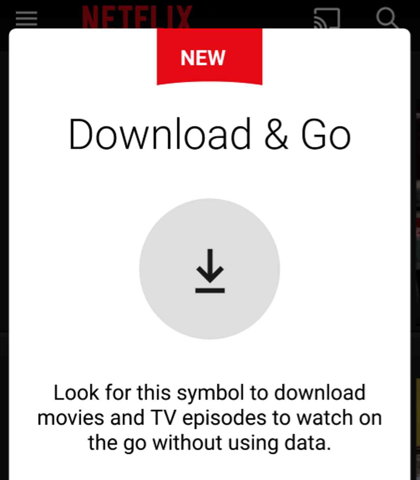 Netflix Download and Go