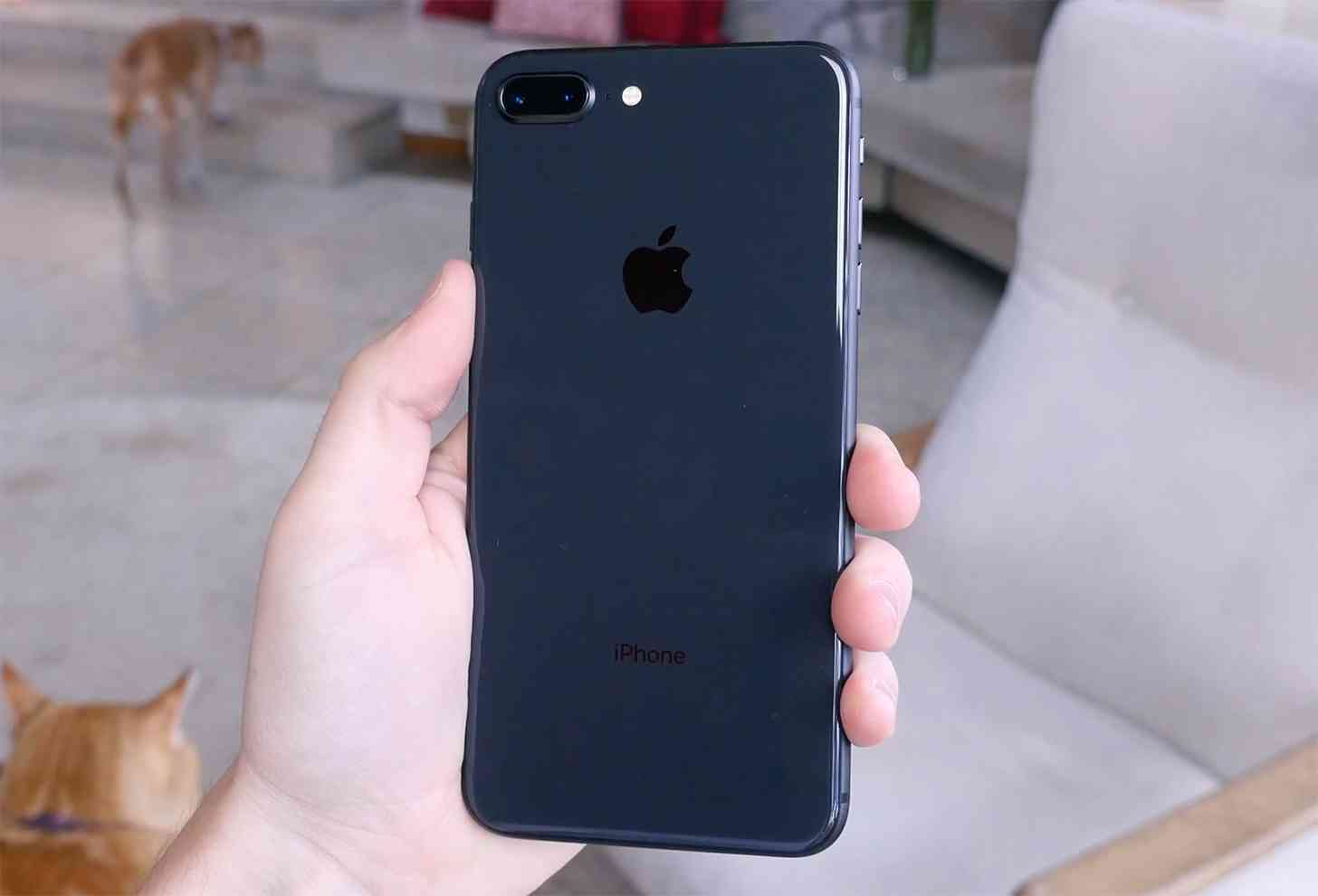 iPhone 8 Plus hands-on video