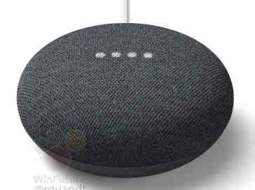 Google Nest Mini leak